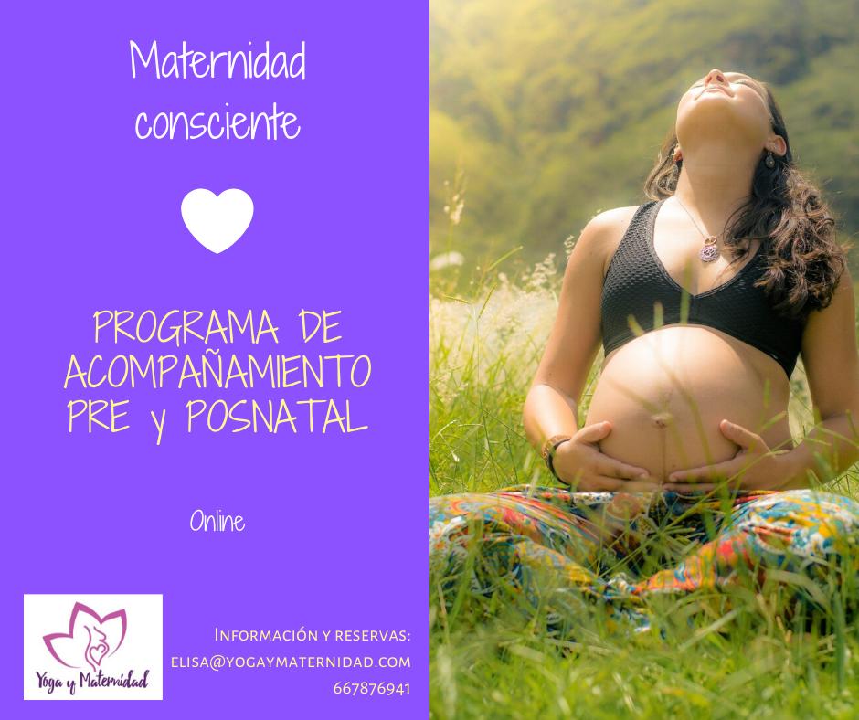 formación embarazo y postparto